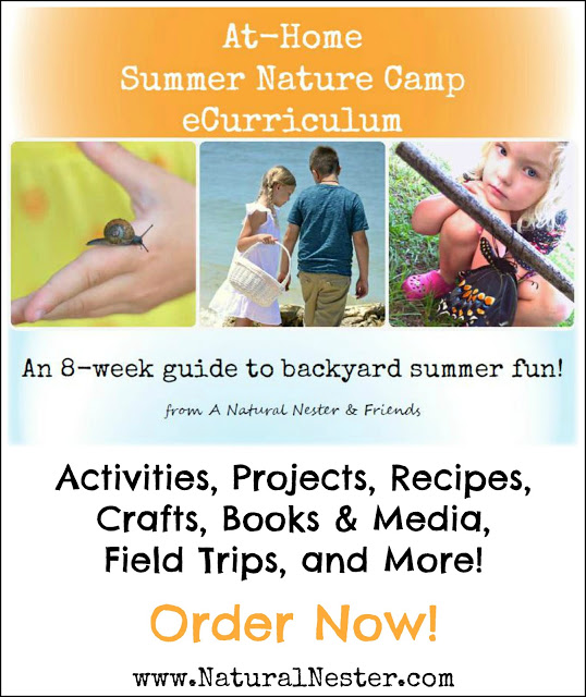 A Natural Nester At Home Summer Nature Camp